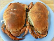 2 whole Crabs