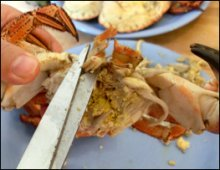 Preparing for crab soup