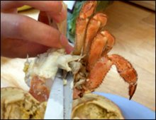 Crab soup recipe