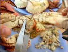 Making Crab soup