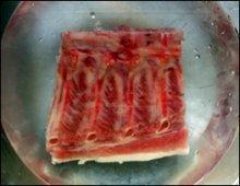Raw pork spine